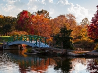 33_bridge_fallcolors